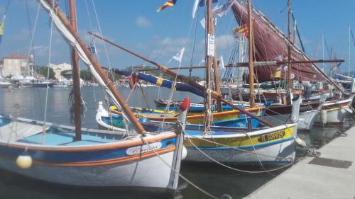 Pitibi : Guest accommodation near Sanary-sur-Mer