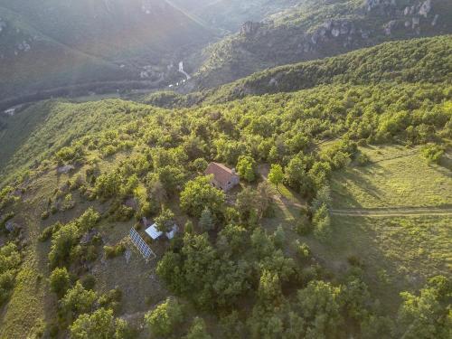 Le gite des vautours : Guest accommodation near Trèves