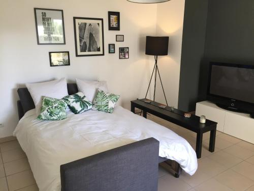 Freed'home Mogador : Apartment near Blagnac