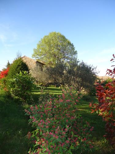 Le vieux tilleul : Bed and Breakfast near Bessèges