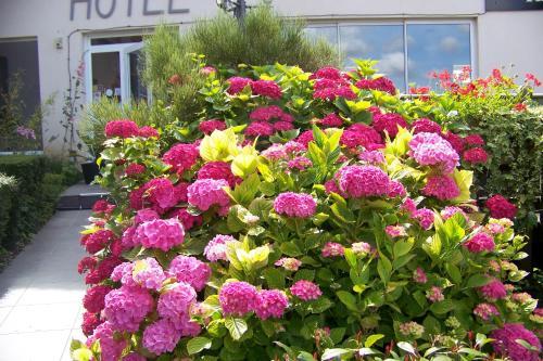 Hotel Bal : Hotel near Nortkerque