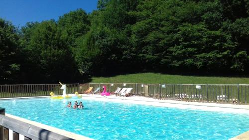Camping 46 Rainettes : Guest accommodation near Pomarède