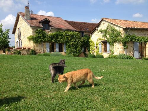 Le Mas : Bed and Breakfast near Sorges