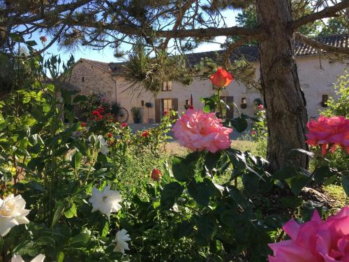 Gites dans les Champs : Guest accommodation near Saint-Macoux