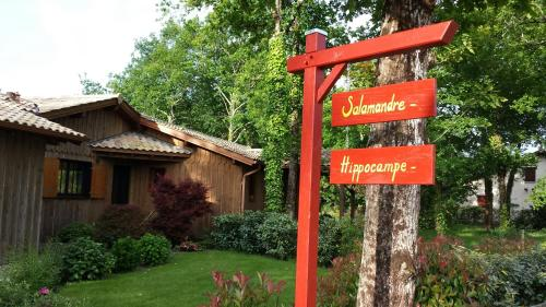 Salamandre et Hippocampe : Bed and Breakfast near Le Teich