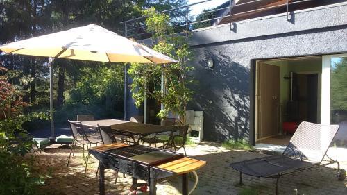 Face au Sancy : Guest accommodation near Cournols