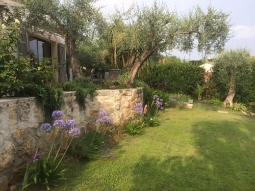 Villa - Mas Saint Antoine Grasse : Bed and Breakfast near Grasse