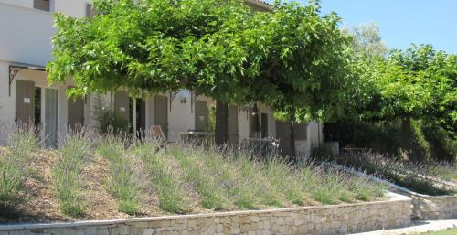 Maison d'hôtes La Sidoine au Mont-Ventoux : Bed and Breakfast near Crillon-le-Brave