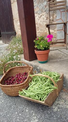 La Source : Bed and Breakfast near Mouhet