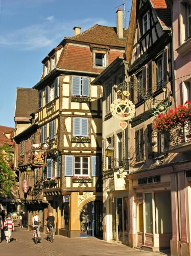 Closerie Saint-Martin : Apartment near Colmar