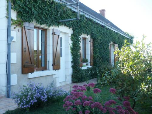 Chambres D'hôtes Anne-Marie : Bed and Breakfast near Paulnay