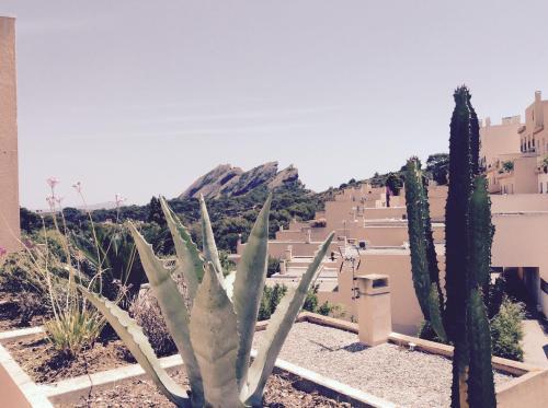 T3 grande terrasse : Apartment near La Ciotat
