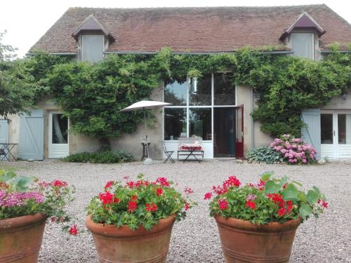 ChampduTaillis : Bed and Breakfast near Couleuvre