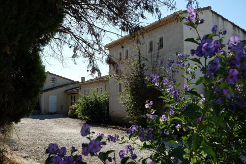 Mas Jaro : Guest accommodation near Mas-Blanc-des-Alpilles