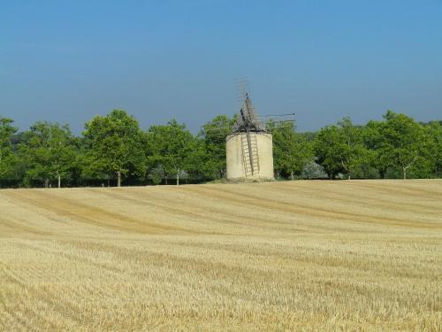 La mordorée : Bed and Breakfast near Saint-Martin-de-la-Brasque