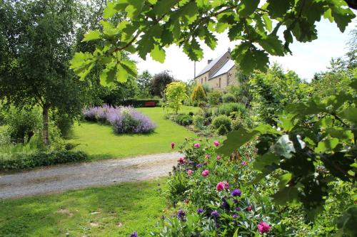 Au Jardin Des Violettes : Bed and Breakfast near Courtomer