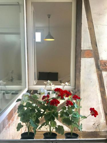 Guillaum's : Apartment near Dijon