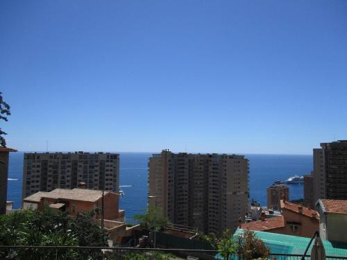 1Bedroom Apartment TOP OF MONACO with seaview : Apartment near Blausasc