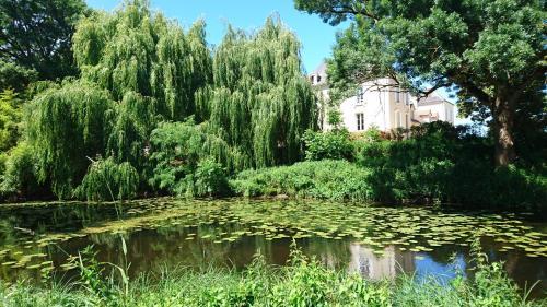 Moulin d'Amour : Guest accommodation near Coussay-les-Bois