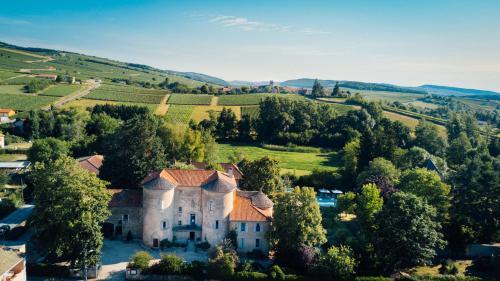 Château D'igé : Hotel near Péronne