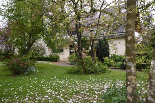 L'écrin du Moulin aux moines : Bed and Breakfast near Taillis