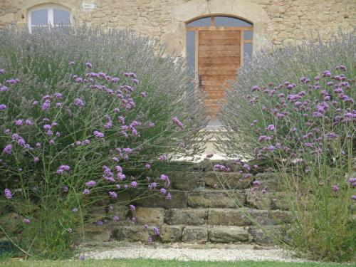 Bel-Endroit : Bed and Breakfast near Auriébat