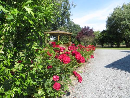 L Opale Inn : Bed and Breakfast near Bournonville