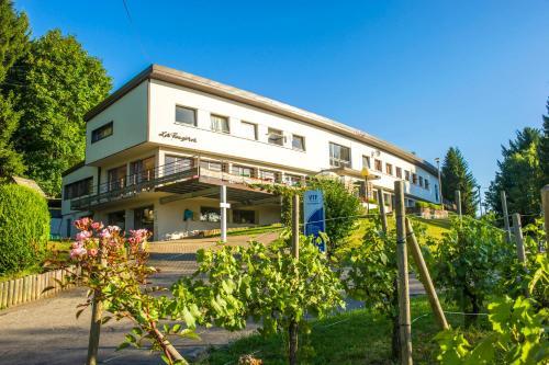 Les Fougeres : Guest accommodation near Soultzeren