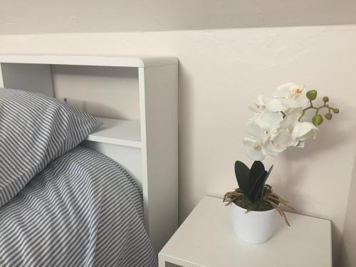 8 Vieille ville : Apartment near Boulogne-sur-Mer