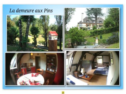 La demeure aux Pins : Bed and Breakfast near Arcizac-ez-Angles