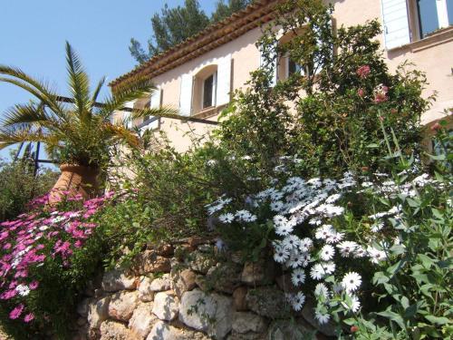 La Masure : Bed and Breakfast near Plan-d'Aups-Sainte-Baume