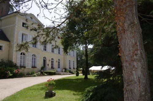 Chateau De Chicamour : Hotel near Montbarrois