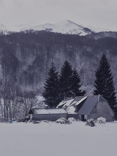 La Tanière des ours : Bed and Breakfast near Izaux