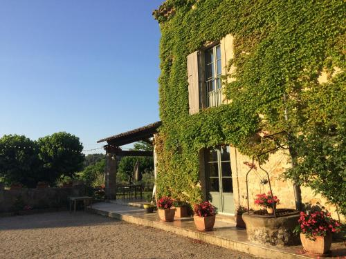 domaine de pelican : Bed and Breakfast near Plaissan