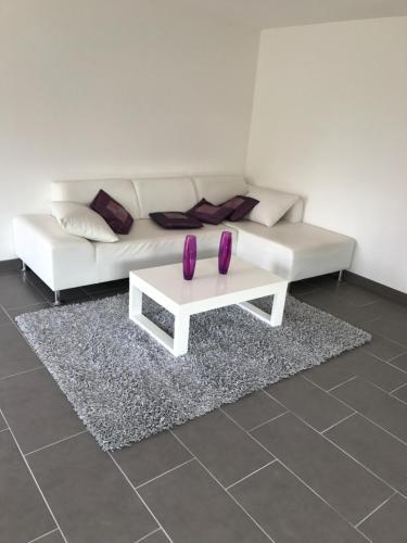 Appartement Fontaine Des Epousées : Apartment near Breuvannes-en-Bassigny