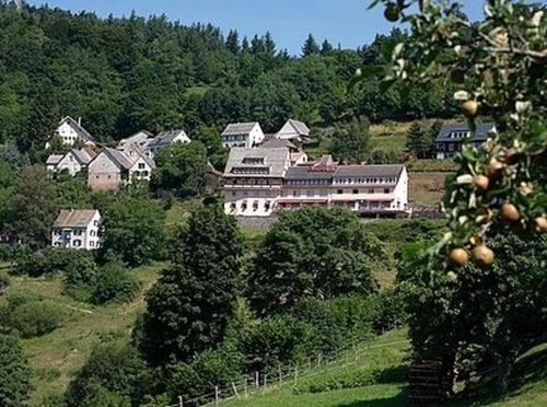 Hôtel Roess : Hotel near Soultzeren