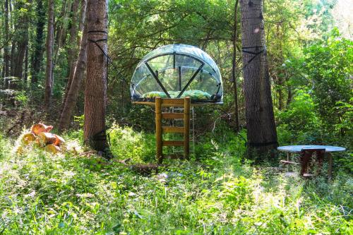 Les Bulles du Rocher de Fontainebleau : Guest accommodation near Aufferville