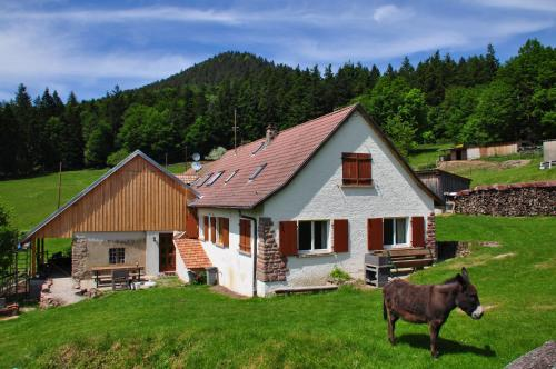 Gite Rammelstein : Guest accommodation near Rombach-le-Franc