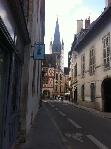 Le Nid De La Chouette : Apartment near Dijon