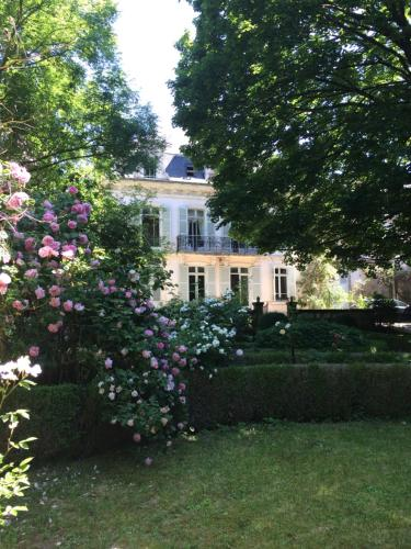 Belle Fontaine : Bed and Breakfast near Crézançay-sur-Cher