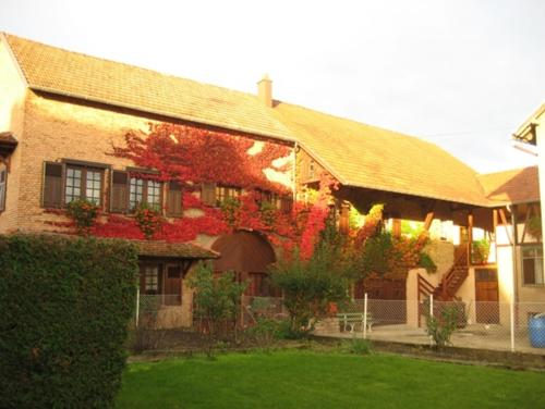 A l'Ancienne Ferme : Apartment near Hirschland