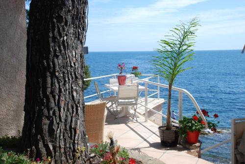 Villa et Bateau pieds dans l eau : Guest accommodation near Carqueiranne