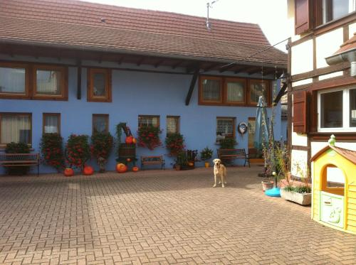 Chambres d'Hôtes Mélodies d'Alsace : Bed and Breakfast near Plobsheim