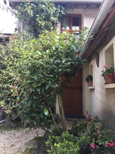 Petite Maison Briarde : Guest accommodation near Andrezel