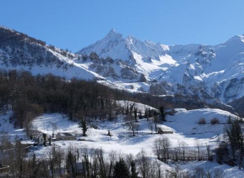La petite Jeanne : Guest accommodation near Arrens-Marsous