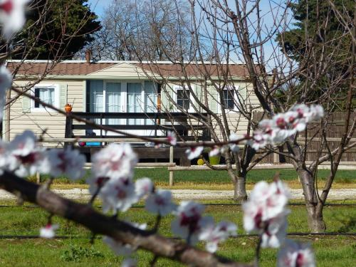 Holiday home Chemin de la mer - 3 : Guest accommodation near Latour-Bas-Elne