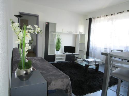 Deckerveillant : Apartment near Roppentzwiller