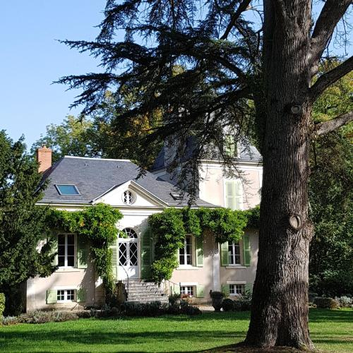 Château de La Villette : Guest accommodation near Saint-Chartier