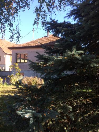 la maison de Lucie : Guest accommodation near Biblisheim