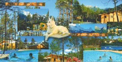 Parc Résidentiel de Loisir : Le Loup Blanc du Riou : Guest accommodation near Saint-Pons